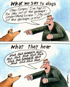 cartoon by Gary Larson